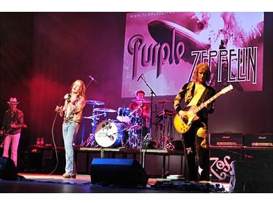 Purple Zeppelin promo pic 2017